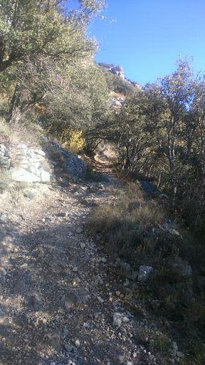 Spain autumn 2016 phone 1874 (288x512)