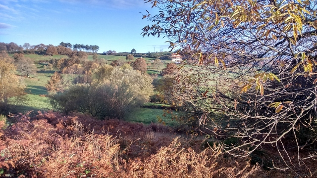 Spain autumn 2016 phone 4035 (640x360)