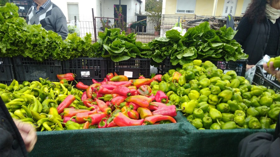 Shiny red and green peppers on a market stall in Greece