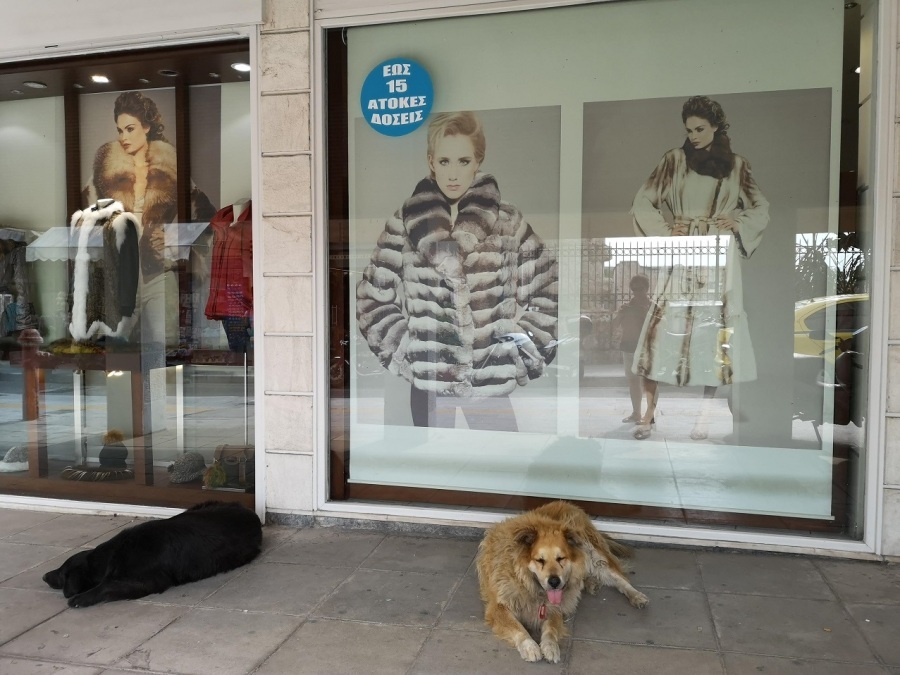 Shop dummies wearing fur jackets with dogs