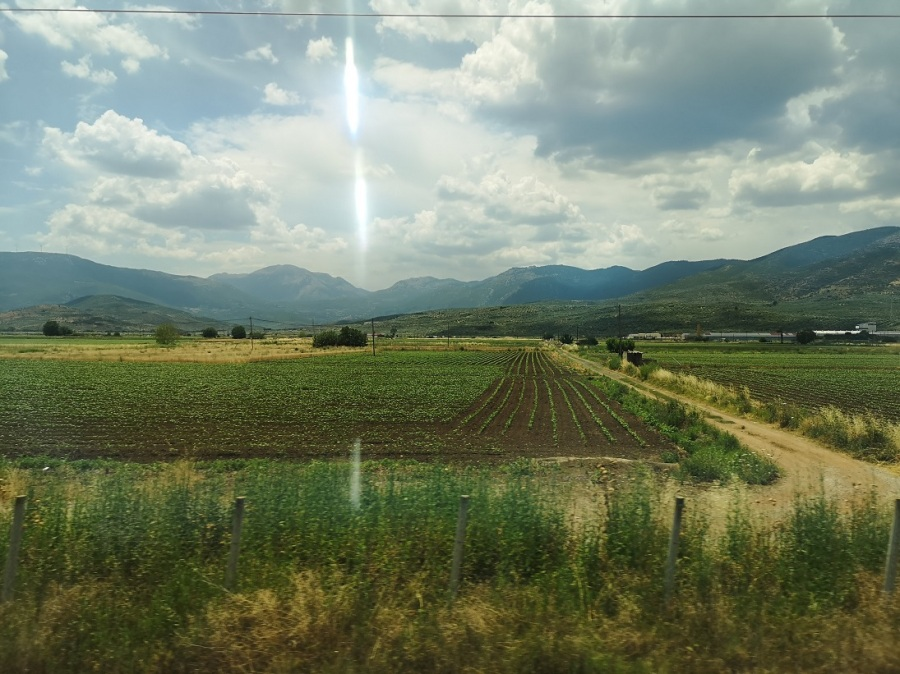 Green fertile countryside flashes by through train window