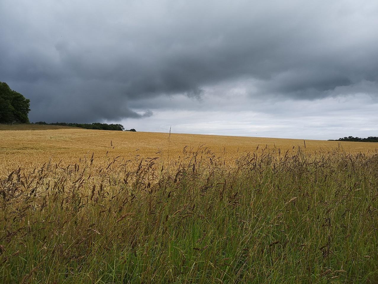 Dark brooding clouds in East Lothian
