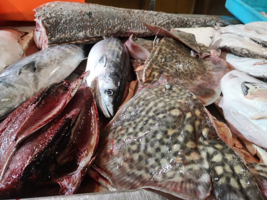 Fish on market stall Tavira