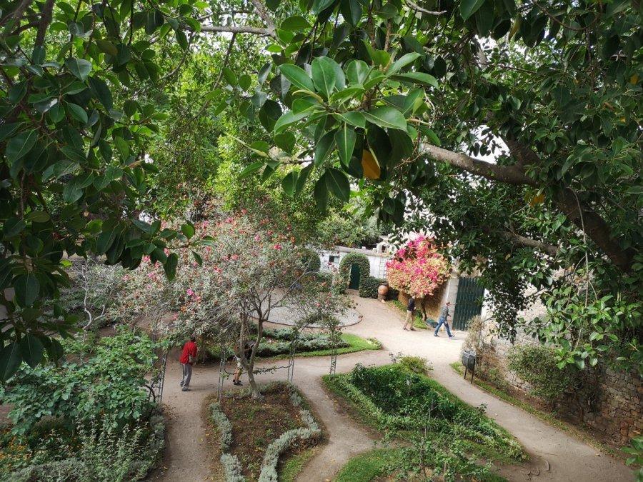 overhead view gardens Castelo do Tavira