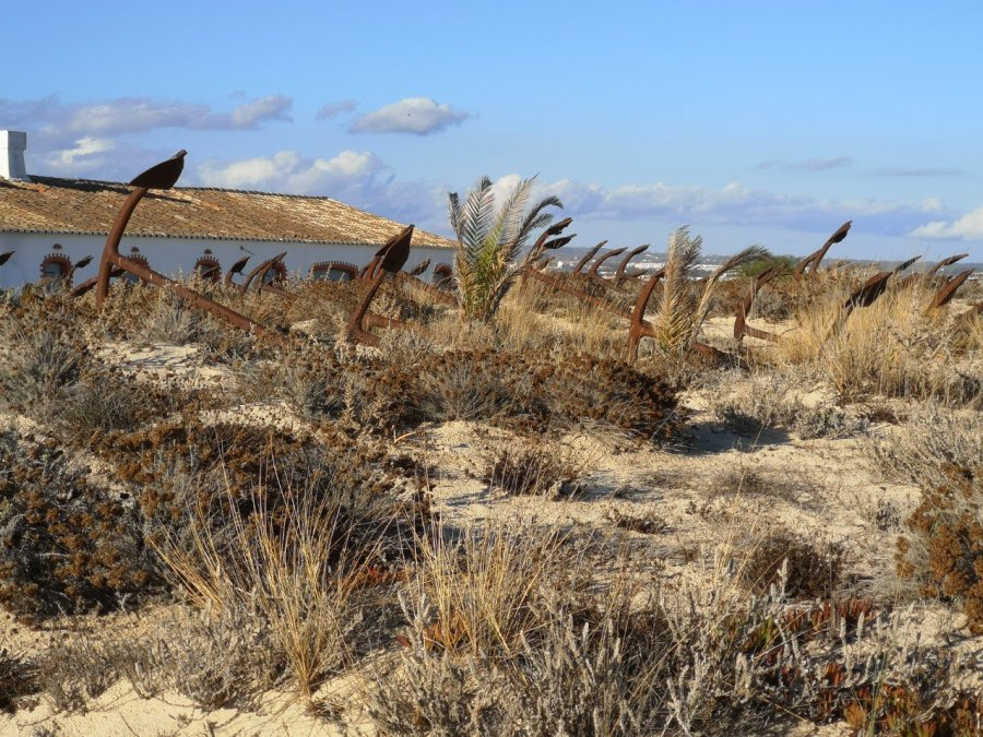 anchors in the sand Praia do barril beach
