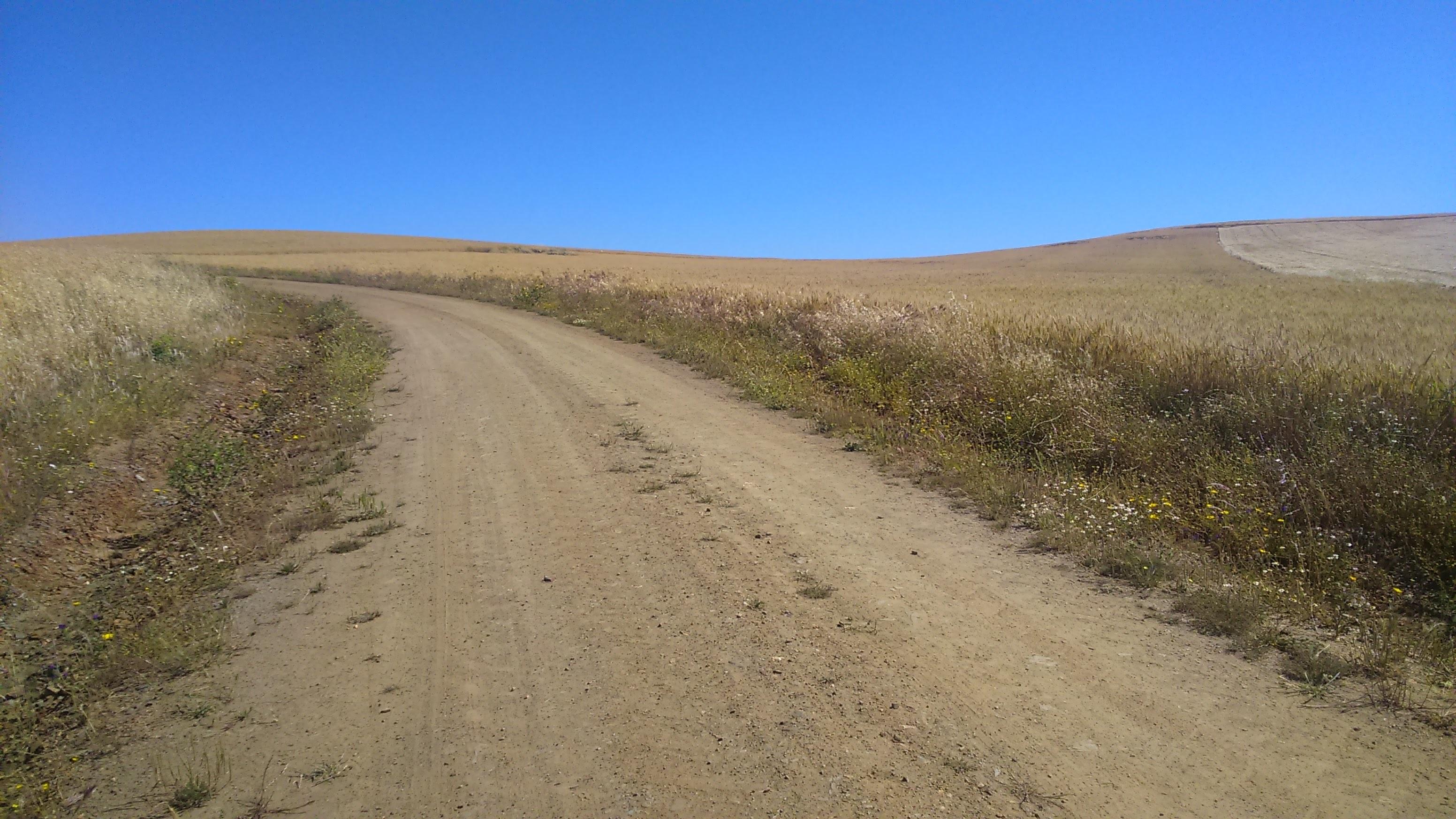 Via de la Plata Camino